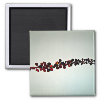 Autumn branch With red leaves Fridge Magnets