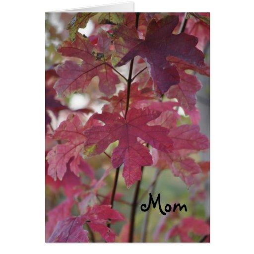 Autumn Breeze ~ Birthday Mom Greeting Cards