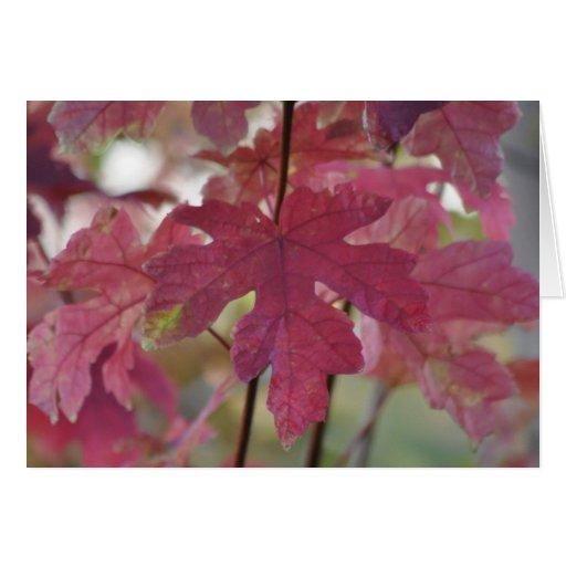 Autumn Breeze ~ Everyday Card