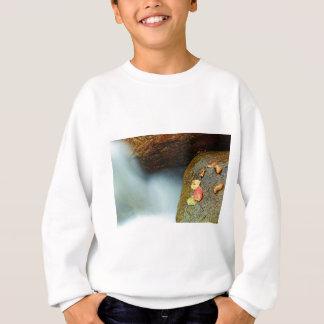 Autumn brook sweatshirt