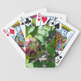 autumn bud poker deck