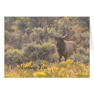Autumn Bull Elk Custom Missing You Card