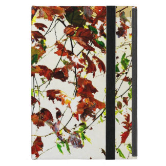 Autumn candy Ipad mini, retina 2, 3, air, pro case