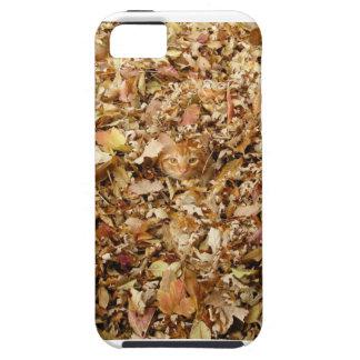 Autumn Cat iPhone 5 Case