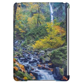 Autumn Color Along Starvation Creek Falls 2