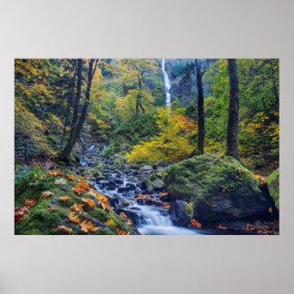 Autumn Color Along Starvation Creek Falls 2 Poster