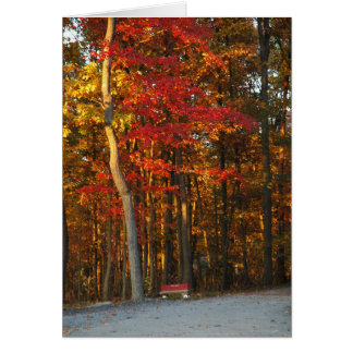 Autumn Colors Brighten Any Day Greeting Card