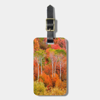 Autumn Colors In Rocky Mountains, Wyoming, USA Luggage Tag
