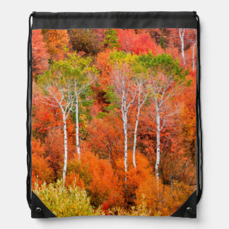 Autumn Colors In Rocky Mountains, Wyoming, USA Rucksacks