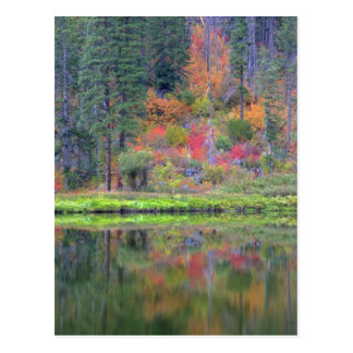 Autumn colors of forests in The Cascade 2 Postcard