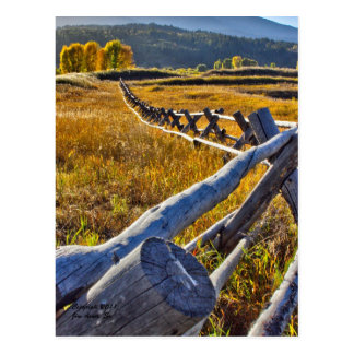 Autumn Colors - Star Valley Wyoming - Postcard
