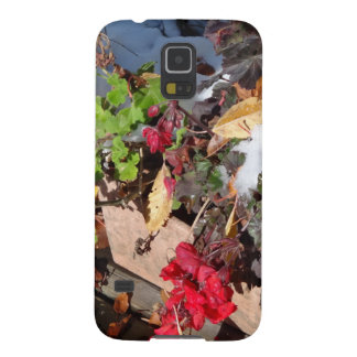 autumn colours galaxy s5 covers