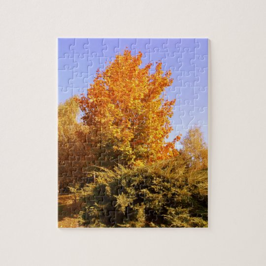 Autumn Colours Jigsaw Puzzle