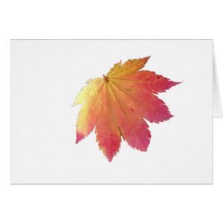 Autumn Colours Leaf Card
