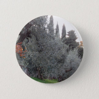 Autumn countryside with olive trees Tuscany, Italy 6 Cm Round Badge