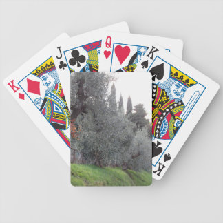 Autumn countryside with olive trees Tuscany, Italy Bicycle Playing Cards