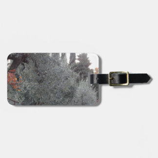 Autumn countryside with olive trees Tuscany, Italy Luggage Tag