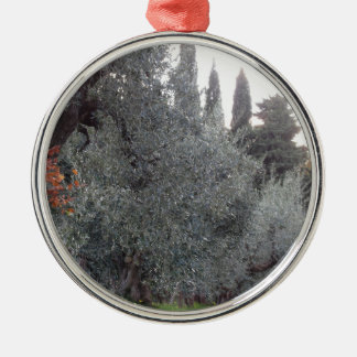 Autumn countryside with olive trees Tuscany, Italy Metal Ornament