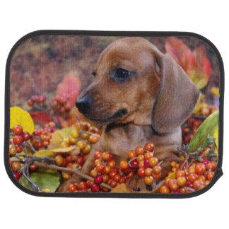 Autumn Dachshund Puppy Floor Mat