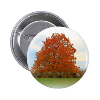 Autumn Day Pinback Buttons