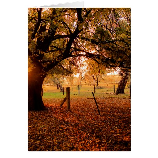 Autumn Day Cards