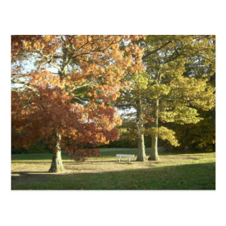 Autumn Day Postcard
