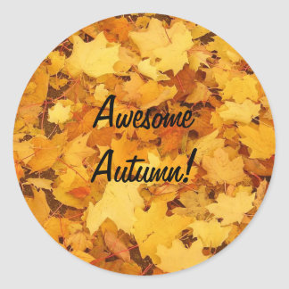 Autumn-Decorate Anything Classic Round Sticker