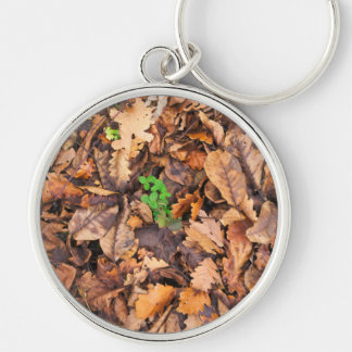 Autumn Dry Leaves and Green Clovers Silver-Colored Round Key Ring