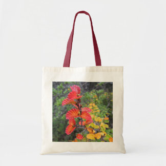 Autumn fagus tote bag