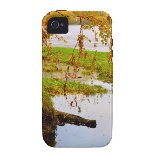 Autumn Fall Colorful Leaves Tree Leaf Park Forest iPhone 4/4S Case
