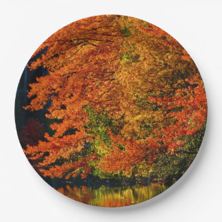 Autumn Fall Foliage Photo Colours Rustic Wedding 9 Inch Paper Plate