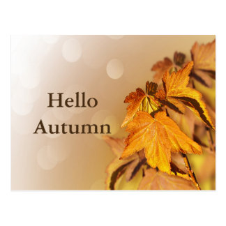 Autumn Fall Leaves Bokeh Postcard