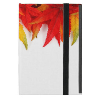 Autumn/Fall Leaves Fire Colors Ipad cover