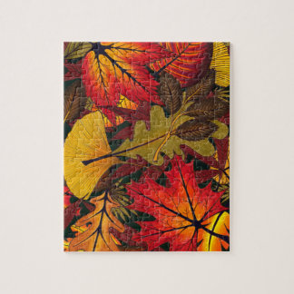 Autumn / Fall Leaves - Puzzle