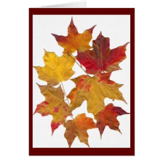 Autumn Falling Leaves Card