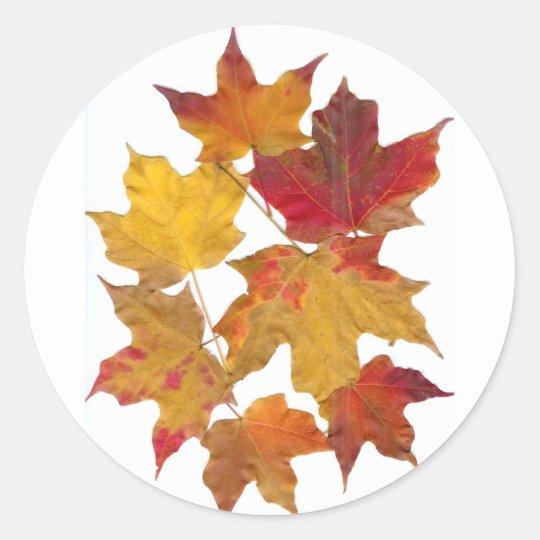 Autumn Falling Leaves Round Sticker