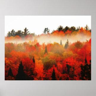 Autumn Field Adirondacks Trees Scene Landscape Poster