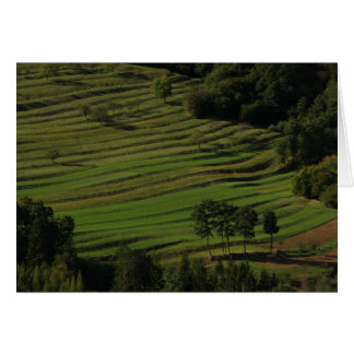 Autumn fields, Prem, Slovenia Card