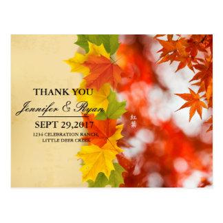 Autumn foliage/fall wedding postcard