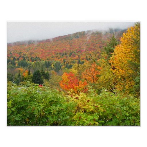 Autumn Foliage in New England Print