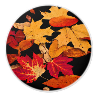Autumn Foliage in Red Orange Yellow Brown Ceramic Knob