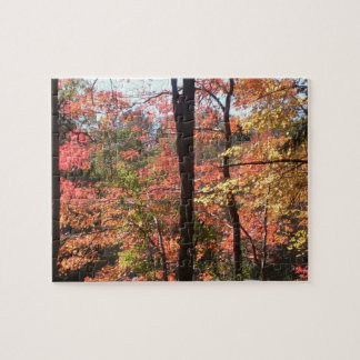 Autumn Foliage Puzzle