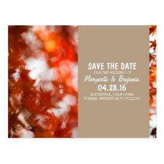 Autumn foliage/Save The Date Postcard