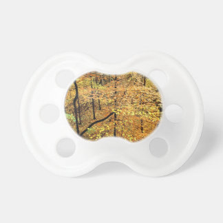 Autumn Forest Percy Warner Park Pacifier