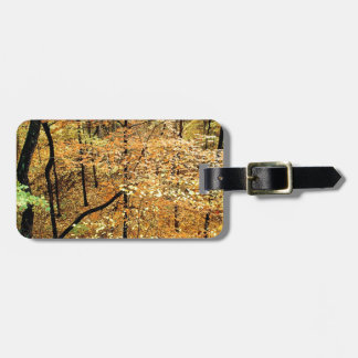 Autumn Forest Percy Warner Park Travel Bag Tags