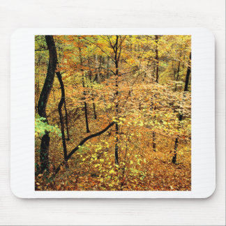 Autumn Forest Percy Warner Park Mousepad