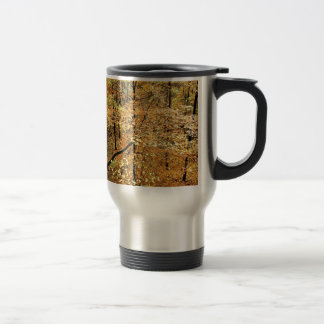 Autumn Forest Percy Warner Park Mugs