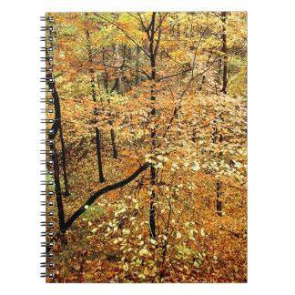 Autumn Forest Percy Warner Park Journals