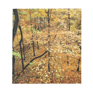 Autumn Forest Percy Warner Park Note Pad