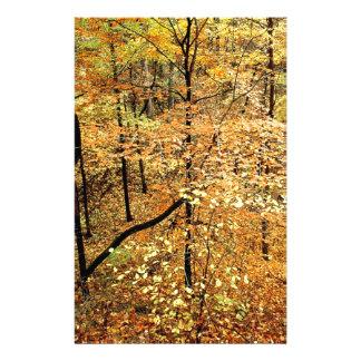 Autumn Forest Percy Warner Park Stationery Design